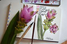 Botanical painting by Krzysztof Kowalski