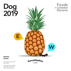 Lucky food 2019 - Food trends for the Year of the Pig 2019 - KarmaWeather 12 Chinese Zodiac Signs, Chinese Astrology, Seasons Pizza, Dog Zodiac, Lucky Food, Raspberry Recipes, Lucky Colour, White Food, Year Of The Pig