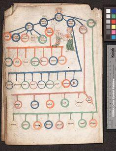 via Erik Kwakkel @erik_kwakkel Crafty - Colourful page showing biblical genealogy (U Kansas, Kenneth Spencer, 9/2:29, 14th c).