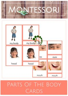 Montessori Parts Of The Body Cards – Montessori Nature