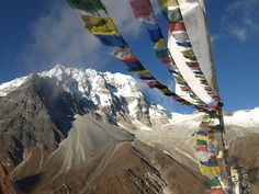 Nepal Lion Tours and Treks Pvt. Ltd is fully Registered Trekking company by the highly qualified professional Trekking and Tour leaders to operate Trekking and Travel related tourism activities within Nepal, Tibet, Bhutan and India.   We provides almost everything that one could possibly expert in a trek, tour, expedition or entire holiday package. Specially We organize Nepal Trekking ,Tour, Adventure Holidays, Luxury and Others tourism related activities.