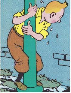The Shooting Star -   Tintin