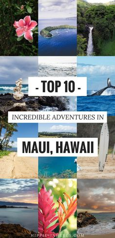 Maui is not a place to sit around on the beach. It's a place to go play and be active! Everyone else around will be, so why not join in? Even if you have a budget of 20 bucks you can rent a SUP (stand up paddleboard) and look into the clear blue ocean for […]