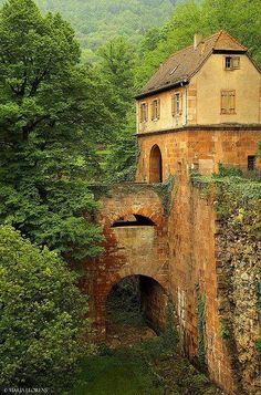 """Heidelberg Germany - June 2013 A recommended, """"must-do"""" from my friend, Melissa Proctor."""