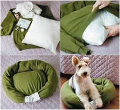 Diy dog pillow how to make pet beds 35 New ideas Diy Dog Bed, Diy Bed, Pet Beds Diy, Dog Bean Bag, Little Live Pets, Animal Projects, Cool Pets, Diy Pillows, Diy Stuffed Animals