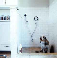 dog shower for the mudroom...i will build a house just for this...