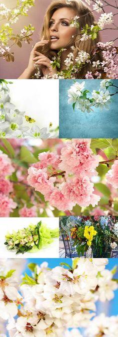 Растровый клипарт - Весна 13