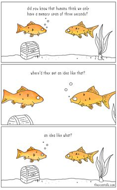 Short Funny Comics About Animals By Jimmy Craig