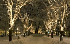 Snowy night in Boston by halmorgan, via Flickr