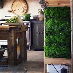 lovely kitchen, herb wall