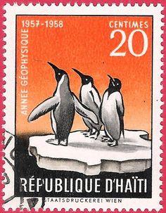 Haïti, Pinguinos on Ice