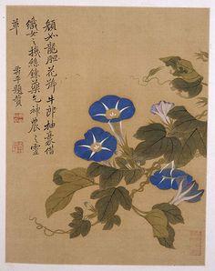 """第八帧花卉,图左侧题曰:""""颜如龙胆,花号牛郎。抽豪借织女之机丝,炼药乞神农之灵草。""""题文中所赞述的正是在乡间随处可见的牵牛花。牵牛花不仅观赏,还可入药。这一丛牵牛花,花朵姿态各异,或仰、或正、或侧、或垂、或背,花苞数个,兰花白蒂,牵丝绿叶。其用笔秀逸,所绘牵牛自然可亲。款署""""寿平题赞"""", 钤印同上帧。"""