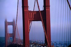 25 free things to do in San Francisco - Lonely Planet