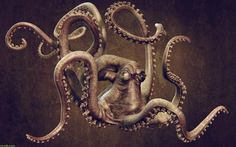 giant squid drawing - Google Search