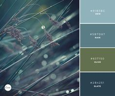 Color Combinations: Morning Mist. Try this gorgeous palette in your next design. #91B3BC #5B8D87 #637150 #2B4251