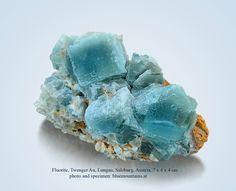 Fluorite  Twenger Au, Lungau, Salzburg, Austria  7 x 4 x 4 cm  IN THE CURRENT BLUEMOUNTAINS AUCTION ON E-ROCKS:  https://e-rocks.com/item/bmm603642/fluorite?sid=d3ac91e8b2b2907967427596142e966e  #fluorite #twenger au #lungau #salzburg #austria #gems #minerals #rocks #crystal #crystals #nature #mineralspecimen #mineralspecimens #specimen #crystalhealing #mineralogy #geology #bluemountains #beautiful #colorful #luxury #fineminerals