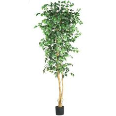 Wholesale 7 Ft Ficus Silk Tree, [Decor, Silk Flowers] -- Read more reviews of the product by visiting the link on the image.