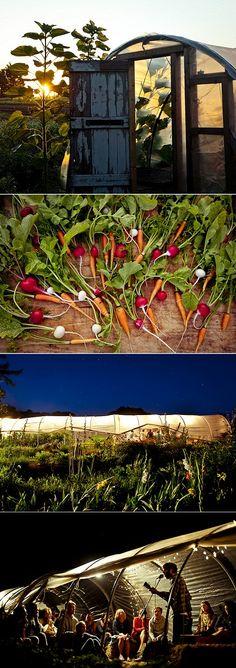 The Beetlebung Farm on Martha's Vineyard.