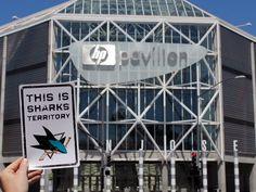 San Jose Sharks Home  HP Pavillon...the Shark Tank!! I miss this place!!!