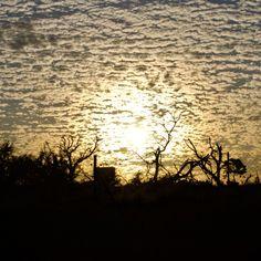 Sunset by Isabel Display Advertising, Print Advertising, Marketing And Advertising, Sunset Captions, Retail Merchandising, Kruger National Park, Sunset Photos, Beautiful Sunset