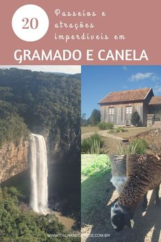 Post com dicas de passeios na Serra Gaúcha, na região de Gramado e Canela #serragaucha #mtur