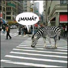 Mamaaaa!!!!