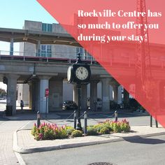 If you're visiting Long Island, then we're the perfect hotel choice! The Ramada's location in Rockville Centre ensures that you'll be seeing the best Long Island has to offer. RamadaRVC.com . . . . #Ramada #RockvilleCentre #LongIsland #NewYork #Hotel #Inn #Affordable #Stay #Near #JFK #JAG #AAA #AARP #discounts #Wedding #trends #rooms #block #planning #girlstrip #weekend #getaway #adventure Long Island Attractions, Rockville Centre, Hotel Inn, Island Food, Jfk, Wedding Trends, Rooms, Adventure, Bedrooms