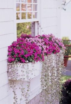 30 Bright and Beautiful Window Box Planters Brighten even the dim areas of your yard with shade-loving plants. Details: www.midwestliving The post 30 Bright and Beautiful Window Box Planters appeared first on Flowers Decor. Window Box Flowers, Balcony Flowers, Front Yard Flowers, Window Planter Boxes, Planter Ideas, Plants For Window Boxes, White Planter Boxes, Hanging Window Boxes, Indoor Window Boxes