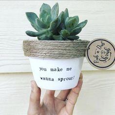 Idea Of Making Plant Pots At Home // Flower Pots From Cement Marbles // Home Decoration Ideas – Top Soop Garden Planters, Succulents Garden, Indoor Garden, Planting Flowers, Outdoor Gardens, Succulent Pots, Succulent Containers, Fall Planters, Painted Flower Pots