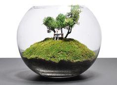 Bonsai Terrarium For Landscaping Miniature Inside The Jars 55 - DecOMG Terrarium Scene, Mini Terrarium, Terrarium Plants, Glass Terrarium, Succulent Terrarium, Succulents Garden, Terrarium Ideas, Indoor Water Garden, Indoor Plants