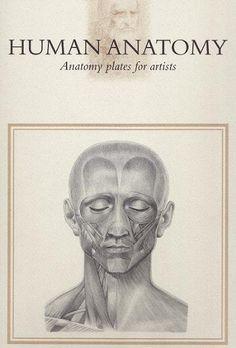 Anatomy Plates for Artists- Human Anatomy