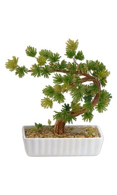 39 best bonsi images bonsai trees bonsai plants bonsai rh pinterest com
