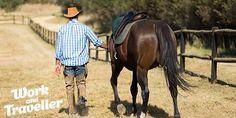 Farm and Travel Australien - bezahlte Rancharbeit - :) - http://www.farmarbeit.de/rancharbeit-australien.html