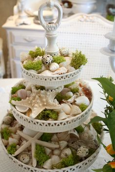Decorazione con le conchiglie: decorazione per la tavola