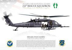 UNITE STATES AIR FORCEALASKA AIR NATIONAL GUARD210th RESCUE SQUADRON