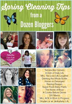 Spring Cleaning Tips from a Dozen Bloggers! - Structure in an Unstructured Life