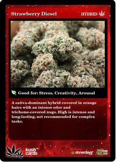 Strawberry Diesel | Repined By 5280mosli.com | Organic Cannabis College | Top Shelf Marijuana | High Quality Shatter