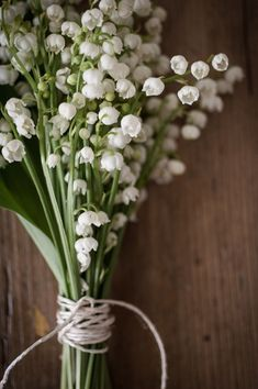 lily -of-the-valley. Reminds me of my papa and my childhood. I must have these i...