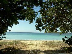Vieques Island in Vieques, Vieques Municipio