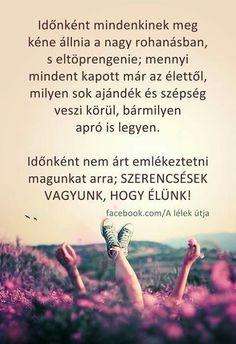 Buddhism, Einstein, Motivational Quotes, Life Quotes, Love, Words, Memes, Happy, Zen