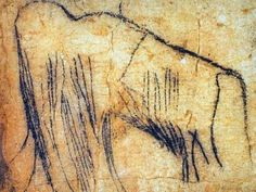 From the Pech Merle cave. Visited on our Inn-to-Inn Guided Trip to the goo. Ancient Art, Ancient History, Art History, Chauvet Cave, Art Pariétal, Paleolithic Art, Art Rupestre, Cave Drawings, Art Ancien