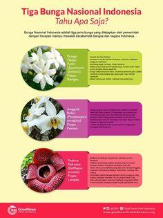 3 bunga nasional Indonesia