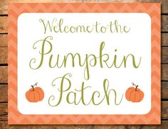 Instant Download Little Pumpkin Fall Autumn Chevron Birthday Party or Baby Shower Printable Pumpkin Patch Door Sign