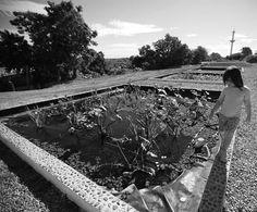 Plantas y humedales artificiales devuelven oxígeno y vida al arroyo Cildáñez  Los humedales reciben el agua del Cildáñez y la reintegran con más oxígeno. Foto: Emiliano Lasalvia