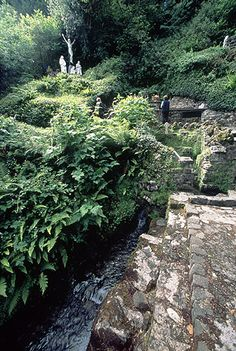 Tobar Nalt Holy Well, Sligo (Ireland)