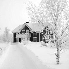 Günaydın✔️Ben oldum olası kar kış severimZordur Şartları ama çok severim o uçsuz bucaksız beyaza bakmayıBana hep Dr Jivago filmini hatırlatır..Belki de Mart doğumlu olduğum için