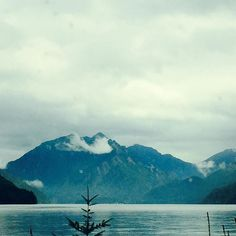 Mountains and Lakes and Clouds and Trees by leahloves