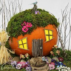 An adorable pumpkin fairy house! Use a pumpkin, natural elements such as twigs and wood, and moss and silk flowers to create a fall themed fairy garden. birdhouse fairy houses Pumpkin Fairy House: a pumpkin house for fairies! Crafts For Seniors, Fall Crafts For Kids, Kids Crafts, Fairy Crafts, Garden Crafts, Garden Ideas, Diy Pumpkin, Pumpkin Crafts, Pumpkin Ideas