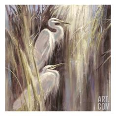 Seaside Egrets Giclee Print by Brent Heighton at Art.com