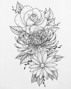 Most recent piece done for a very nice client #flowers #art #drawing #tattoo #flash #flowertattoo #linedrawing #chrysanthemum #rose #daisy #sketch